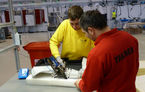 Johnson Controls a deschis o fabrică de scaune auto în Craiova