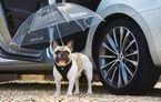 1 aprilie în lumea auto: cele mai bune farse cu mașini de Ziua Păcălelilor