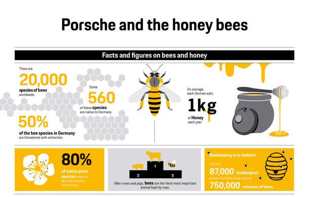 Prima recoltă de miere din 2018 pentru Porsche: constructorul are 3 milioane de albine în Leipzig și vinde mierea colectată în Germania - Poza 2
