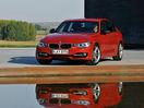 Poza 3 BMW Seria 3 (2012-2015)