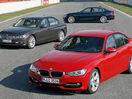 Poza 21 BMW Seria 3 (2012-2015)