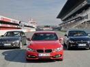 Poza 43 BMW Seria 3 (2012-2015)