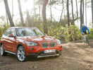 Poza 29 BMW X1 facelift (2012-2015)