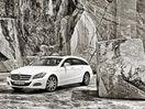 Poza 21 Mercedes-Benz CLS Shooting Brake (2012-2014)