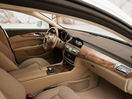 Poza 101 Mercedes-Benz CLS Shooting Brake (2012-2014)