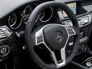 Poza 92 Mercedes-Benz CLS Shooting Brake (2012-2014)