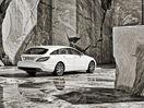 Poza 36 Mercedes-Benz CLS Shooting Brake (2012-2014)