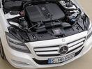 Poza 83 Mercedes-Benz CLS Shooting Brake (2012-2014)