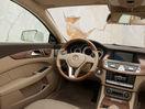 Poza 91 Mercedes-Benz CLS Shooting Brake (2012-2014)