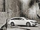 Poza 24 Mercedes-Benz CLS Shooting Brake (2012-2014)