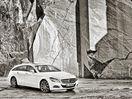 Poza 22 Mercedes-Benz CLS Shooting Brake (2012-2014)