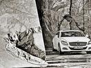 Poza 45 Mercedes-Benz CLS Shooting Brake (2012-2014)