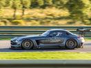 Poza 5 Mercedes-Benz SLS AMG GT3 45th Anniversary