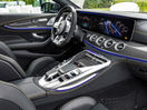 Poza 84 Mercedes-Benz AMG GT Coupe