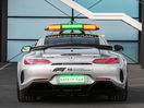 Poza 13 Mercedes-Benz AMG GT R F1 Safety Car