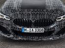 Poza 57 BMW Seria 8