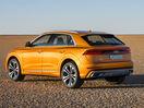 Poza 19 Audi Q8