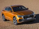 Poza 13 Audi Q8