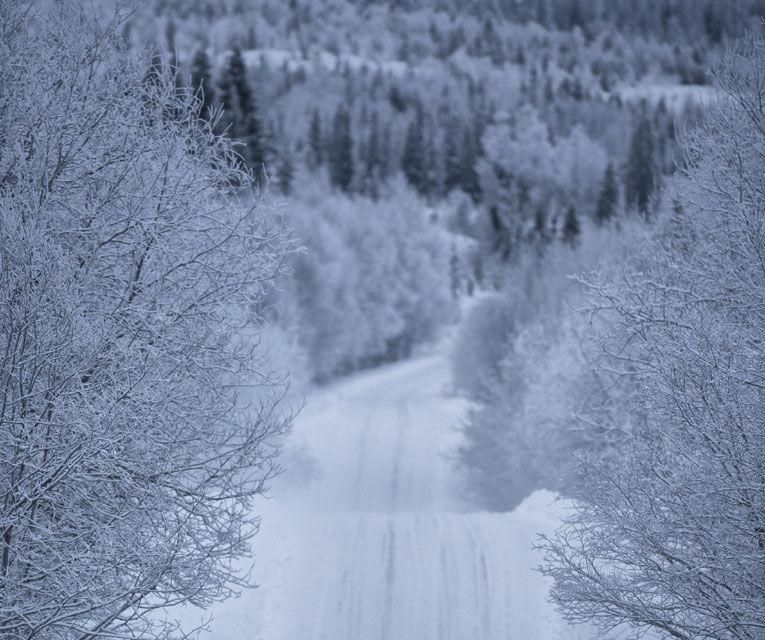 REPORTAJ: Volvo şi viaţa în nordul îngheţat - Poza 27