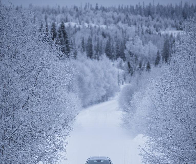 REPORTAJ: Volvo şi viaţa în nordul îngheţat - Poza 5