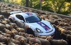 Se întâmplă și la case mai mari: o turmă de oi a blocat o cursă de supercaruri în Franța