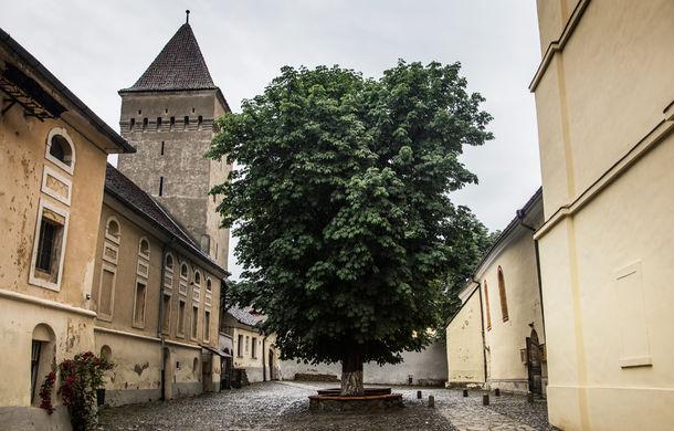 Un german in Transilvania: povestea vinului de la Jidvei și Cetatea de Baltă, surpriza de la Blaj și recordurile catedralei din Alba Iulia - Poza 21