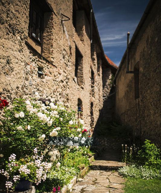 Un german in Transilvania: paragina bisericii din Vurpăr, extazul din cetatea Câlnic și mereu fascinantul Sibiu - Poza 20