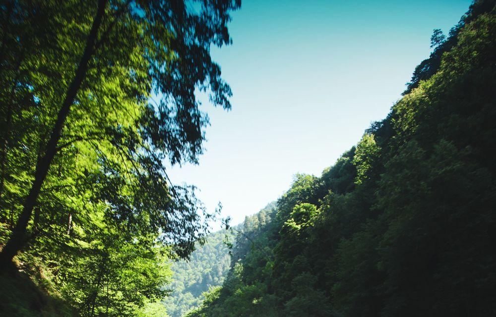 #RomanianRoads by Michelin: Transalpina, drumul dintre nori - Poza 116