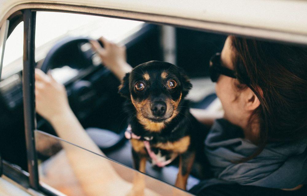 Cele mai periculoase lucruri pe care le facem la volan și ne pun viața în pericol - Poza 12